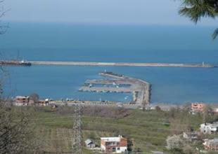 Ünye Limanı'nda iş kazasında bir kişi öldü