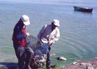 Yuvaköy'ün yüzde 80'i balıkçılıkla geçiniyor
