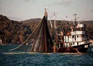 Karadeniz'de Sürdürülebilir Balıkçılık Çalıştayı