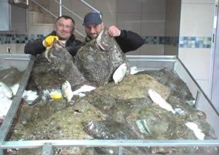 Kalkan balığı  kilosu 75 liradan satılıyor