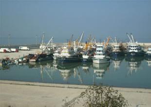 Gazipaşalı balıkçılara yeni bir barınak