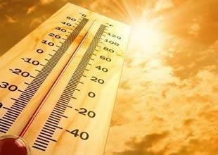 Kuzey Denizi 50 yılda 1,7 derece ısındı