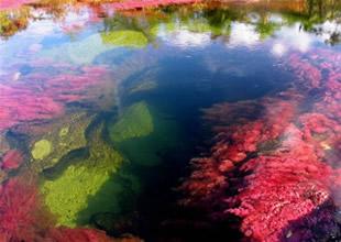 7 renkli nehir, görenleri şaşkına çeviriyor