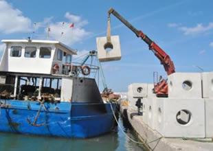 Yalova'da yapa resif projesi hayata geçti