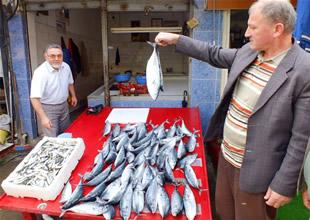 Denizin bereketi balıkçıları güldürdü