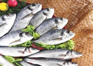 Rusya, balık teknoparkları kuruyor