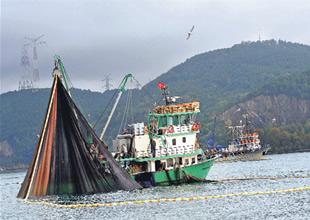 Ecebat'ta balıkçının yüzü 6 bin lüferle güldü