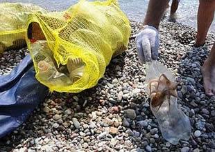 Antalya'da denizden 80 file çöp çıkarıldı