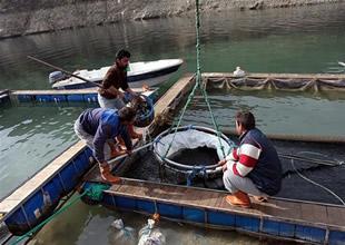 Karakaya'dan Keban Gölü'ne taşındılar