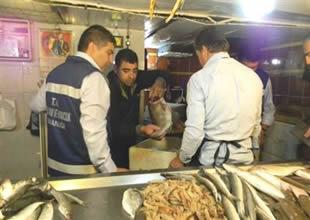 Bakanlık Hatay'da balıkçıları denetledi