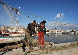 Balık depolarımız, kömür tehdidi altında