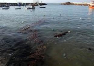 CHP'den TBMM'ye deniz kirliliği sorusu
