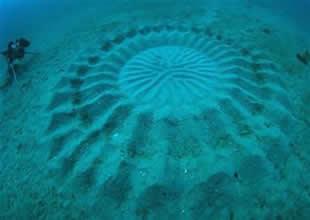 Denizin dibinde gizemli şekiller şaşırttı