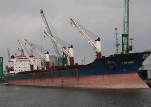Yunanlı şirket Goldenport gemi sattı