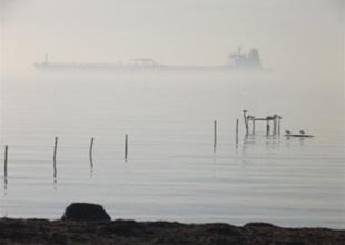 Marmara Denizi'nde sis geçit vermiyor