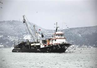 Balıkları korumak için gemi alınacak