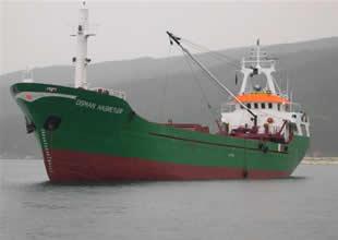 Asgari ücretle gemi sahibi olmuşlar