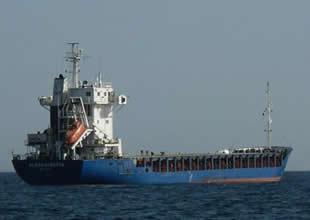 Türkiye'den giden gemide silah iddiası