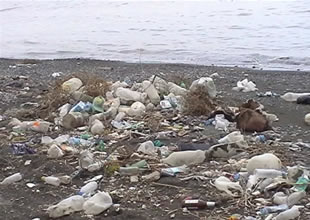 Dünyanın çöpü Batı Karadeniz'den çıktı