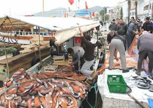 Dalyan'da balık bereketi yaşanıyor