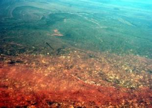 Sapanca Gölü'de korkunç görüntü