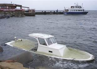 Lodos, Tuzla'da demirli tekneyi batırdı