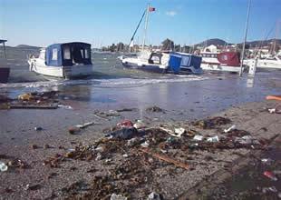 Foça'da fırtına dört tekne batırdı