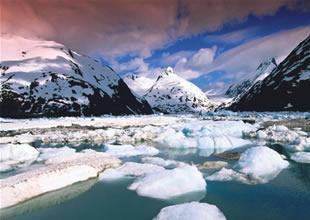 Kuzey Kutbu 50 yıl içinde yeşil alan olacak