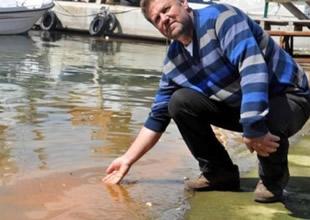 Deniz kirliliği sandılar balık yumurtası çıktı