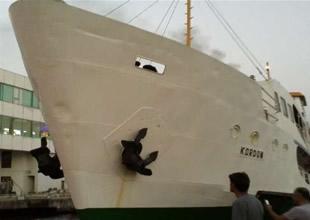 İzmir'de yolcu vapuru iskeleye çarptı