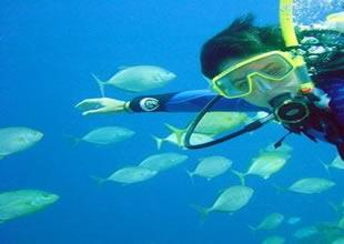 Marmaris için dalış yılı ilan edildi