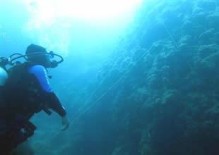 Denizin altındaki hayalet ağlara ulaşıldı