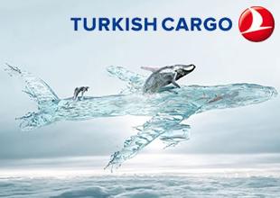Beyaz balinalar Turkish Cargo ile taşındı
