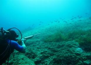 'Zıpkınla balık avlamayan' uyarısı yapıldı