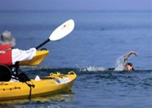 ABD'ye yüzen McCardel'i denizanası ısırdı