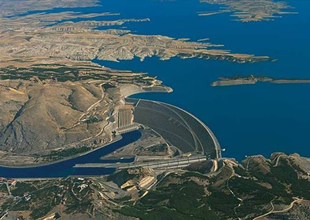 Atatürk Barajı'nda 7 milyon balık üretildi