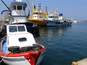 Ege'de Su Ürünleri Avcılığı Kooperatifleri güç birliği yapacak