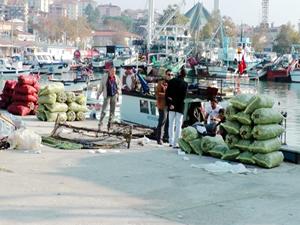 Karasulu balıkçıların yüzünü kum midyesi güldürdü