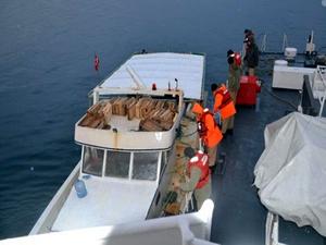 İzmir'de trolle avlanan balıkçılara operasyon: 6 tekneye el konuldu