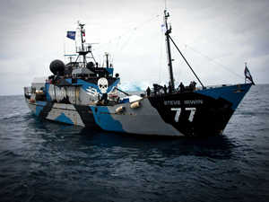 Okyanus koruyucuları Sea Shepherd örgütüne dev bağış