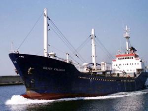 Gülfem Kalkavan isimli gemi, Tuzla'da karaya oturdu