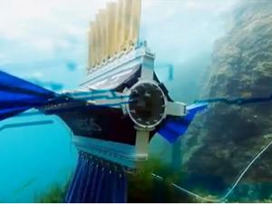 İsviçreli öğrenciler mürekkep balığından esinlenerek yüzen robot yaptı