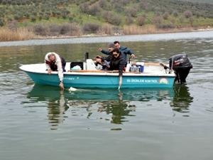Marmara Gölü ekosisteme kazandırılacak