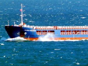 Türk Boğazları'nda emniyetli gemi geçişleri Allah'a emanet!