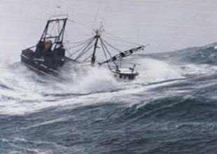 Çin'de tayfun: 6 tekne battı 70 tekne kayıp