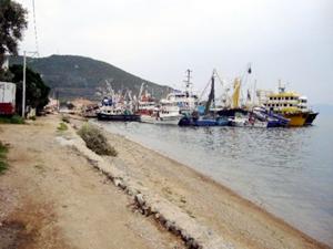 Tekne sayısındaki fazlalık balıkçılara zarar ettirdi