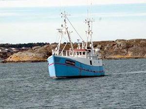 Marianne isimli balıkçı teknesi aktivistlerle birlikte  Gazze'ye gidiyor