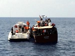 4 günde yakalanan kaçak göçmen sayısı 516