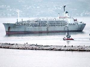 Bandırma Limanı'na gemi ile gelen 9 bin büyükbaş hayvan, ilçeyi kokuttu!