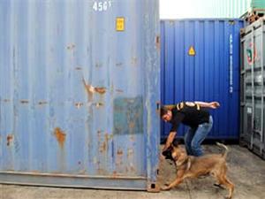 Ambarlı Limanı'nda 13 milyon lira olan kaçak sigara ele geçirildi